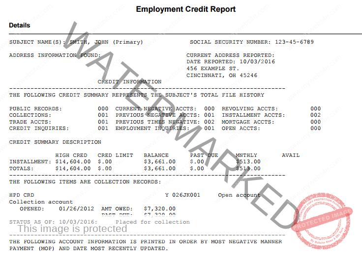 Employment Credit Report